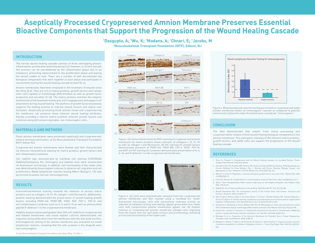 Dasgupta A, Wu K, Madans A, Chnari E, Jacobs M. Aseptically Processed Cryopreserved Amnion Tissue Preserves Essential Bioactive Components that Support the Progression of the Wound Healing Cascade. SAWC 2015 Spring. San Antonio, TX, USA